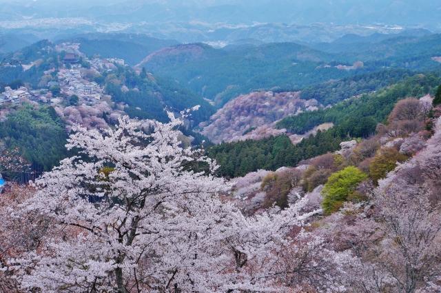 吉野山の散策